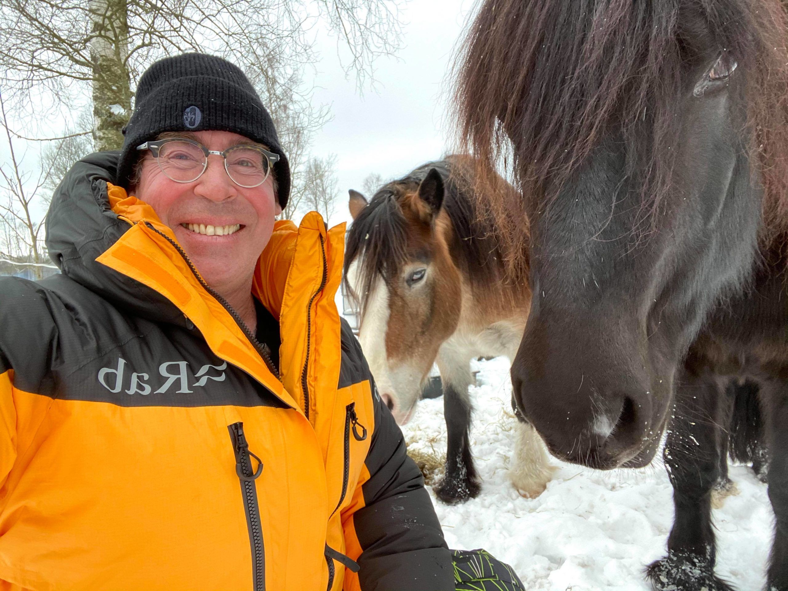 Terapi med hest